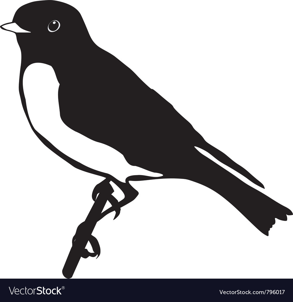 Black silhouette of bluebird vector | Price: 1 Credit (USD $1)