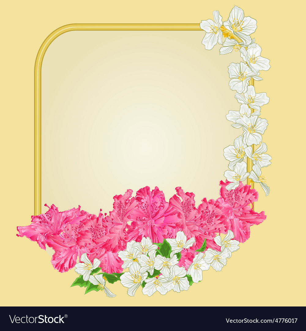 Frame with rhododendron and jasmine greeting card vector | Price: 1 Credit (USD $1)