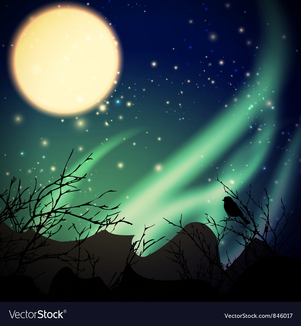 Night with northern lights vector | Price: 1 Credit (USD $1)