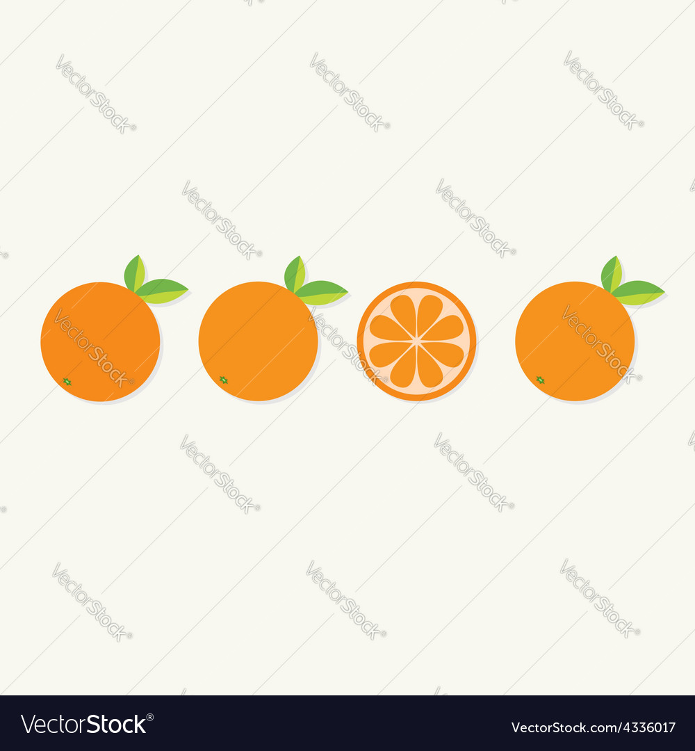 Orange fruit set with leaf in a row cut half vector | Price: 1 Credit (USD $1)
