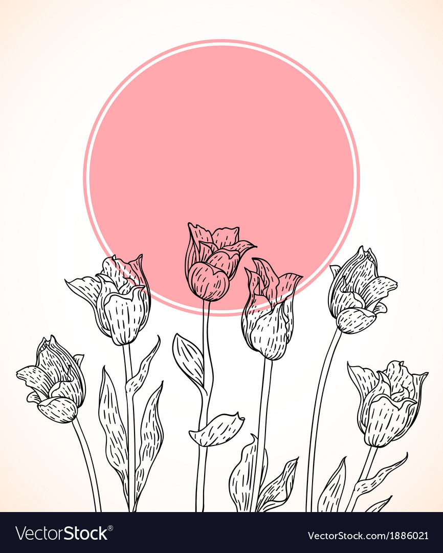 Card with hand drawn tulips on pink circle vector | Price: 1 Credit (USD $1)