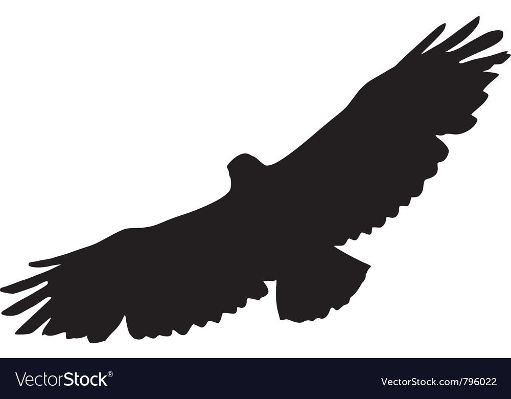 Black silhouette of buzzard vector   Price: 1 Credit (USD $1)