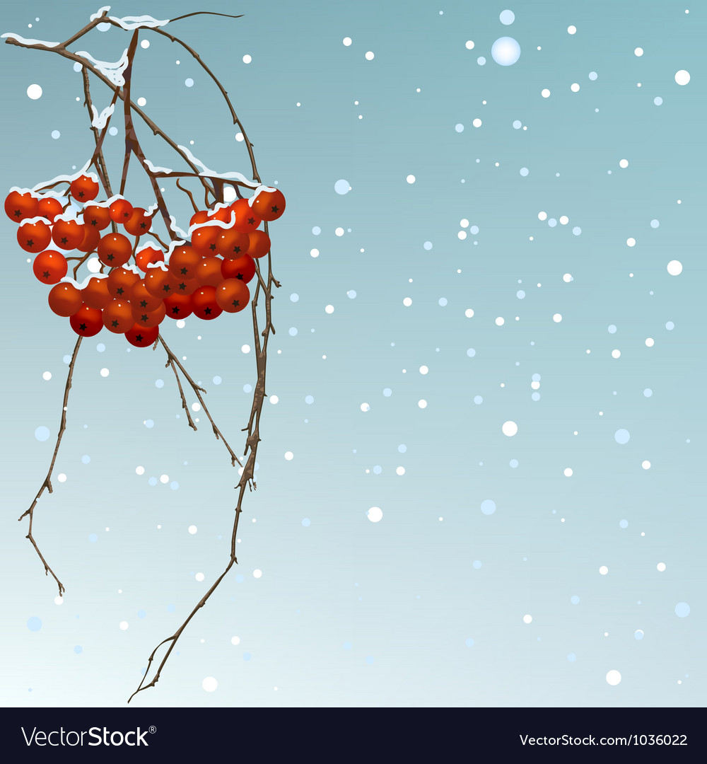 The winter background thread rowan vector | Price: 1 Credit (USD $1)