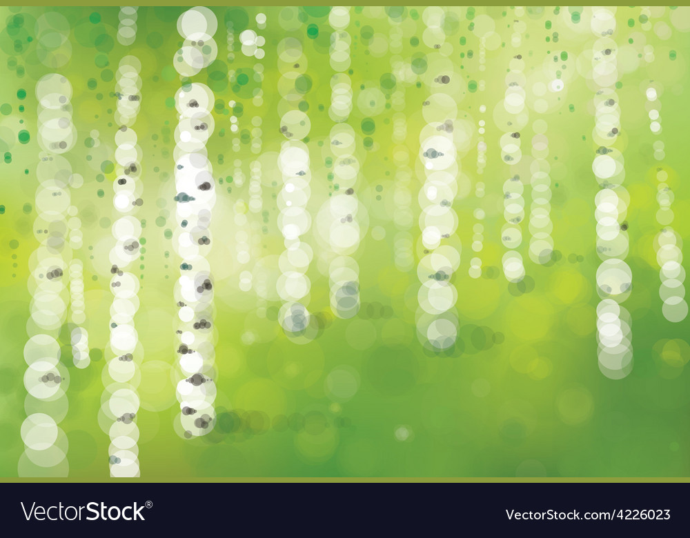 Spring birch forest vector | Price: 1 Credit (USD $1)