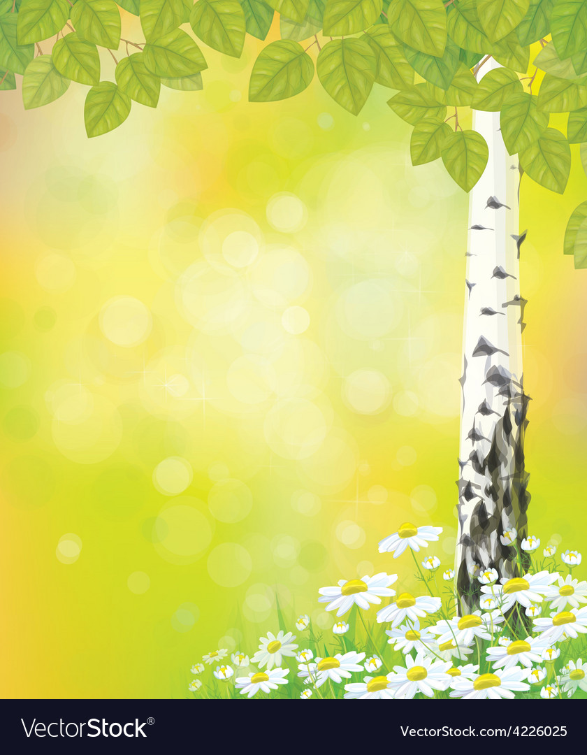 Birch tree flower vector | Price: 1 Credit (USD $1)