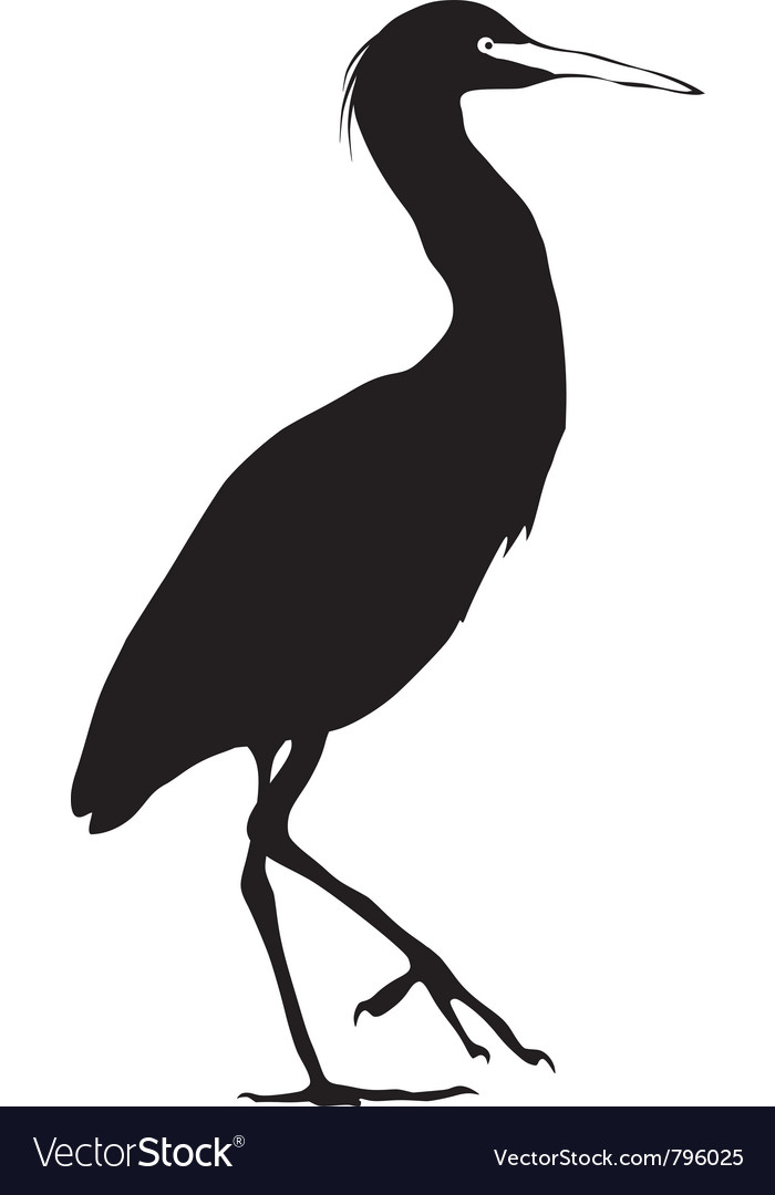 Black silhouette of snowy egret vector | Price: 1 Credit (USD $1)