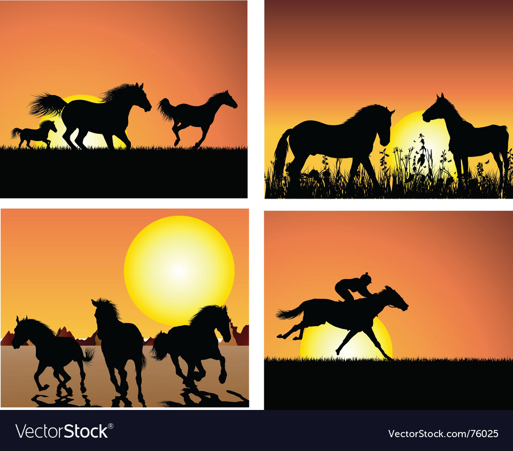 Horse on sunset backgrounds vector | Price: 1 Credit (USD $1)
