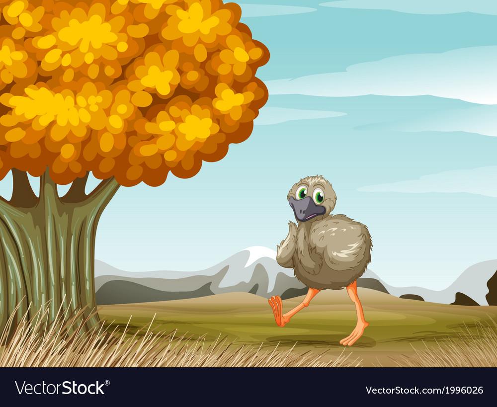 An ostrich near the big tree vector