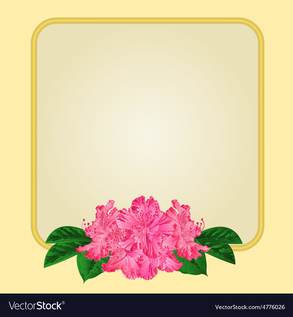 Golden frame with pink rhododendron greeting card vector   Price: 1 Credit (USD $1)