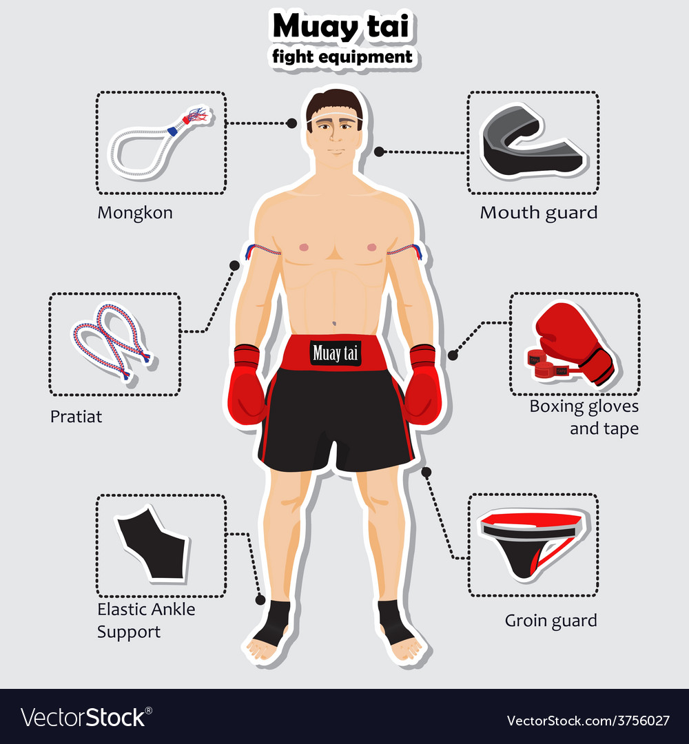 Sport equipment for muay tai martial arts vector | Price: 1 Credit (USD $1)