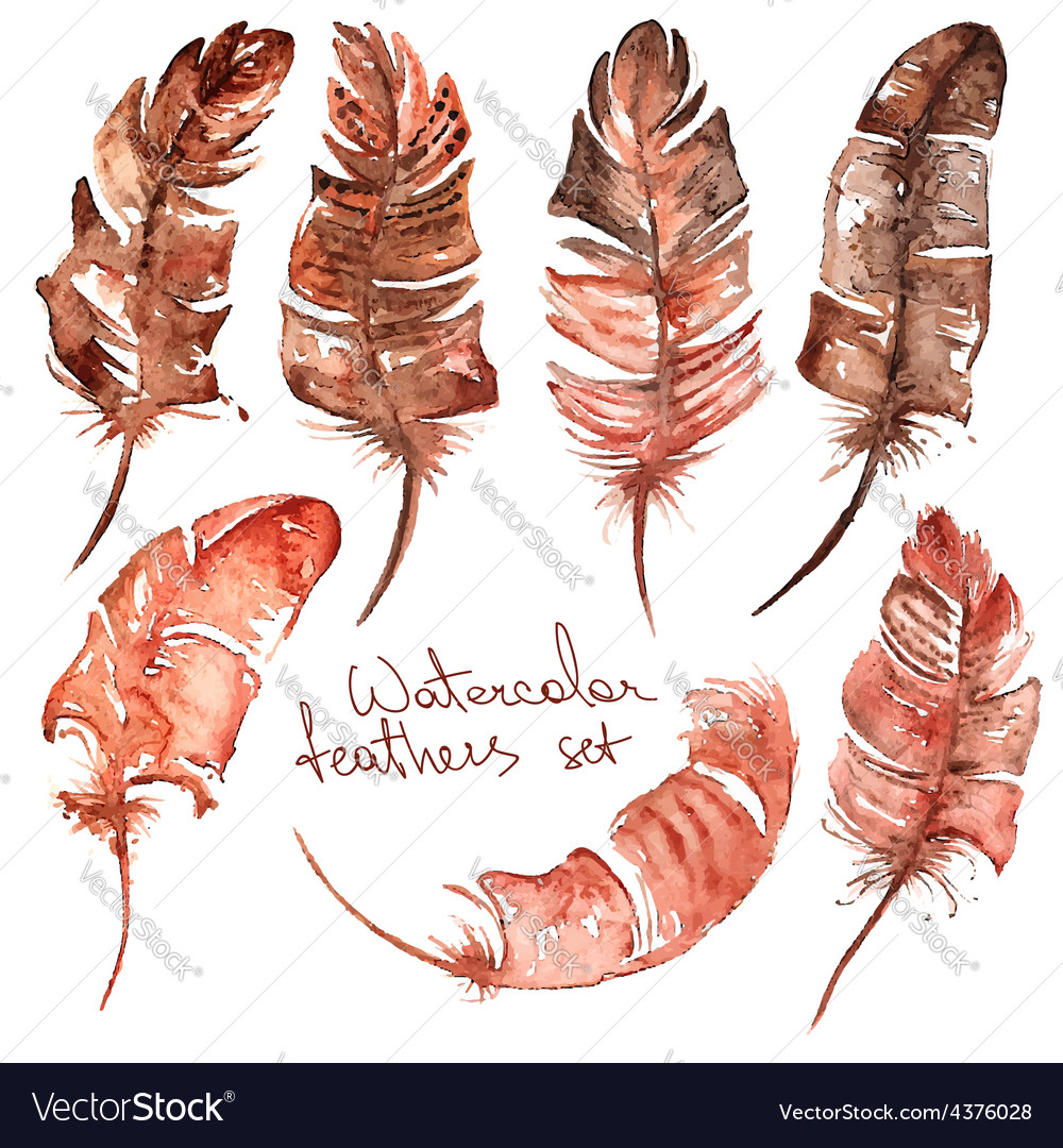 Watercolor feather icons vector | Price: 1 Credit (USD $1)