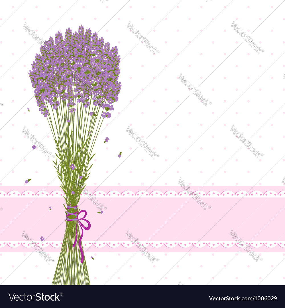 Purple lavender flower vector | Price: 1 Credit (USD $1)
