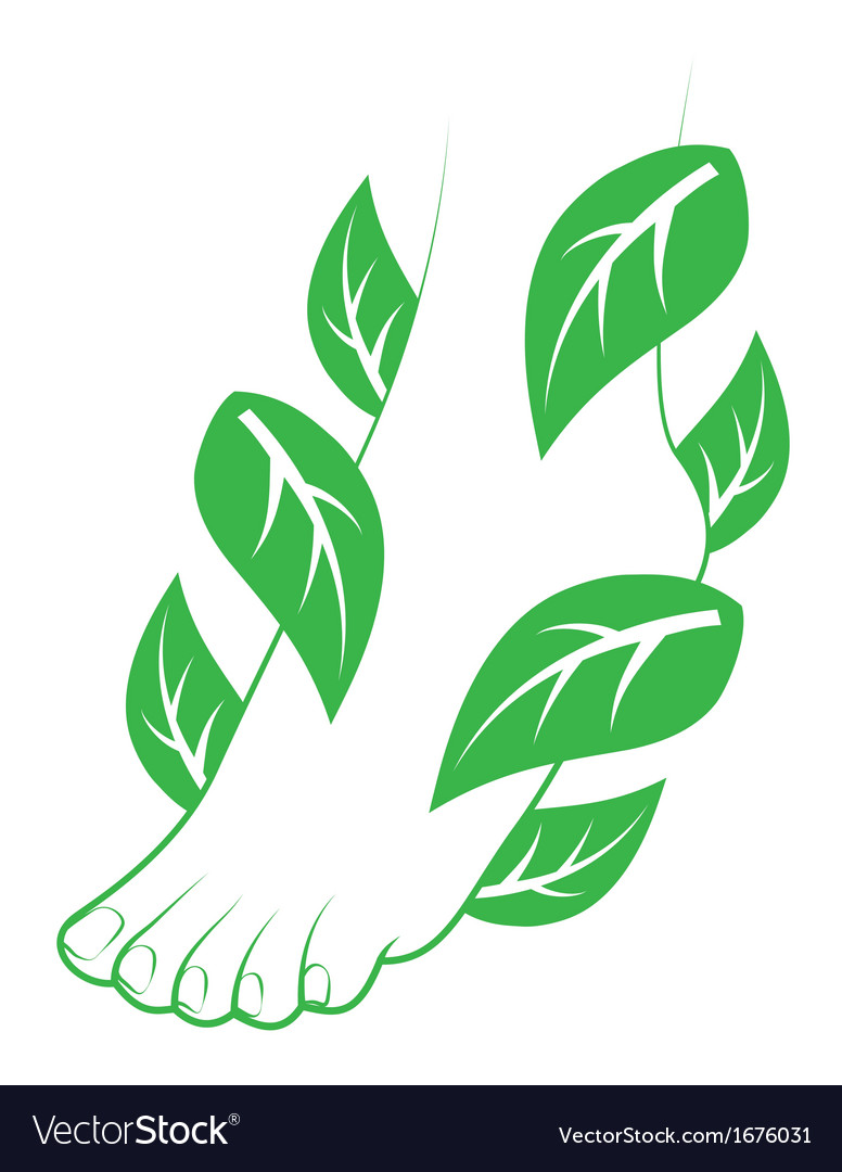Human foot with leafs vector | Price: 1 Credit (USD $1)