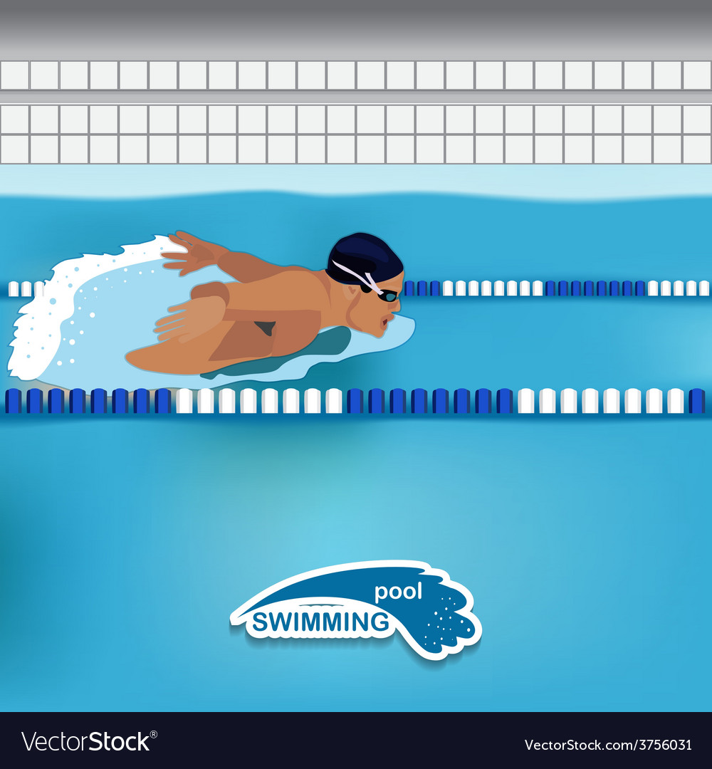 Man is swimming in the pool vector | Price: 1 Credit (USD $1)