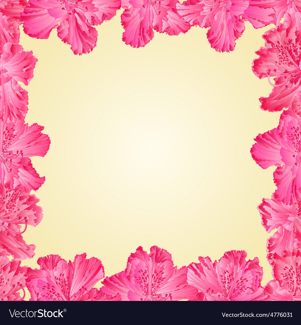 Seamless texture frame of rhododendron vector   Price: 1 Credit (USD $1)