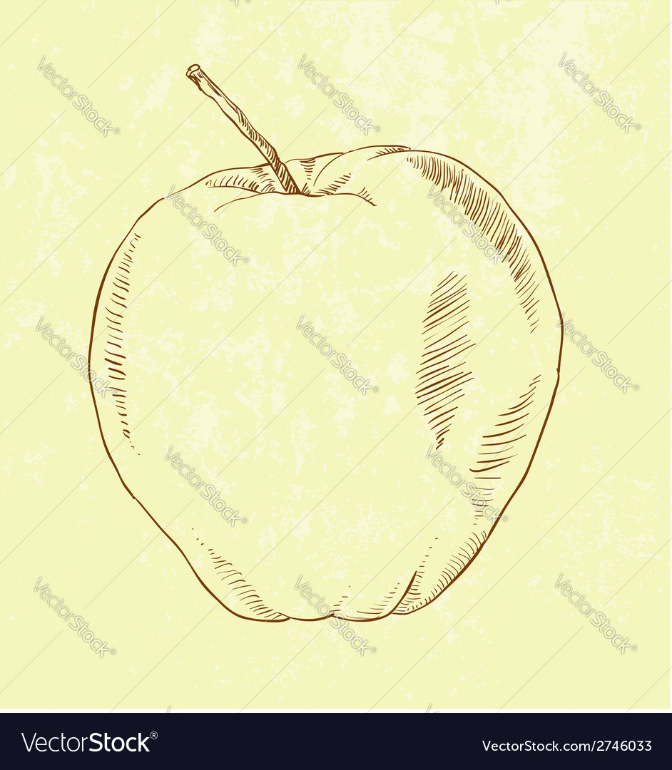 Hand drawn apple vector | Price: 1 Credit (USD $1)