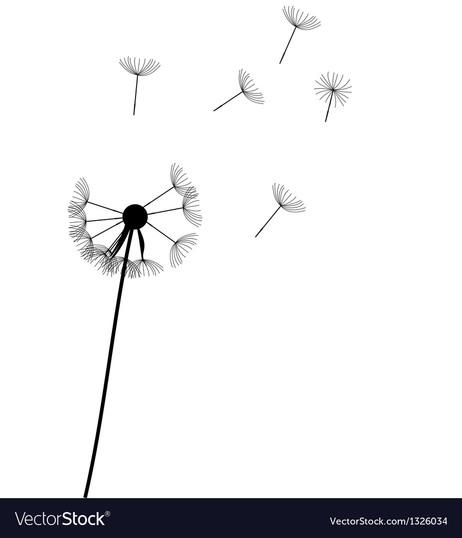 Abstract dandelion background vector | Price: 1 Credit (USD $1)