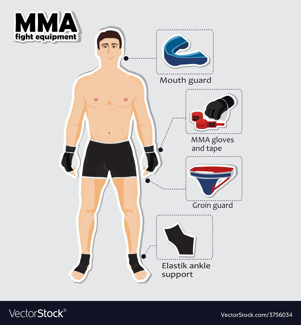 Sport equipment for mixed martial arts vector | Price: 1 Credit (USD $1)