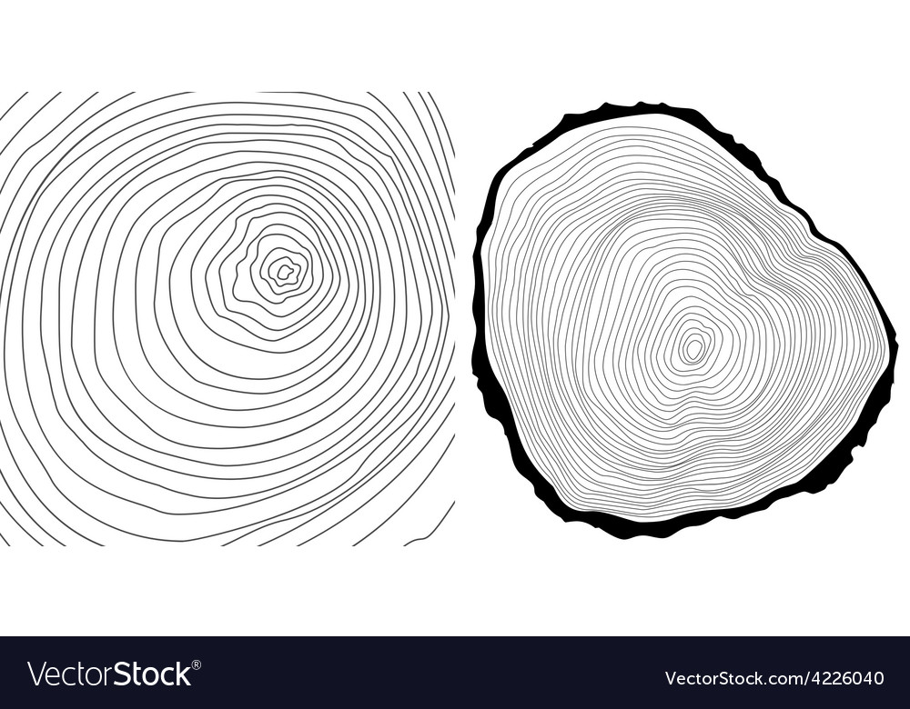 Tree rings background and tree log cutted vector | Price: 1 Credit (USD $1)