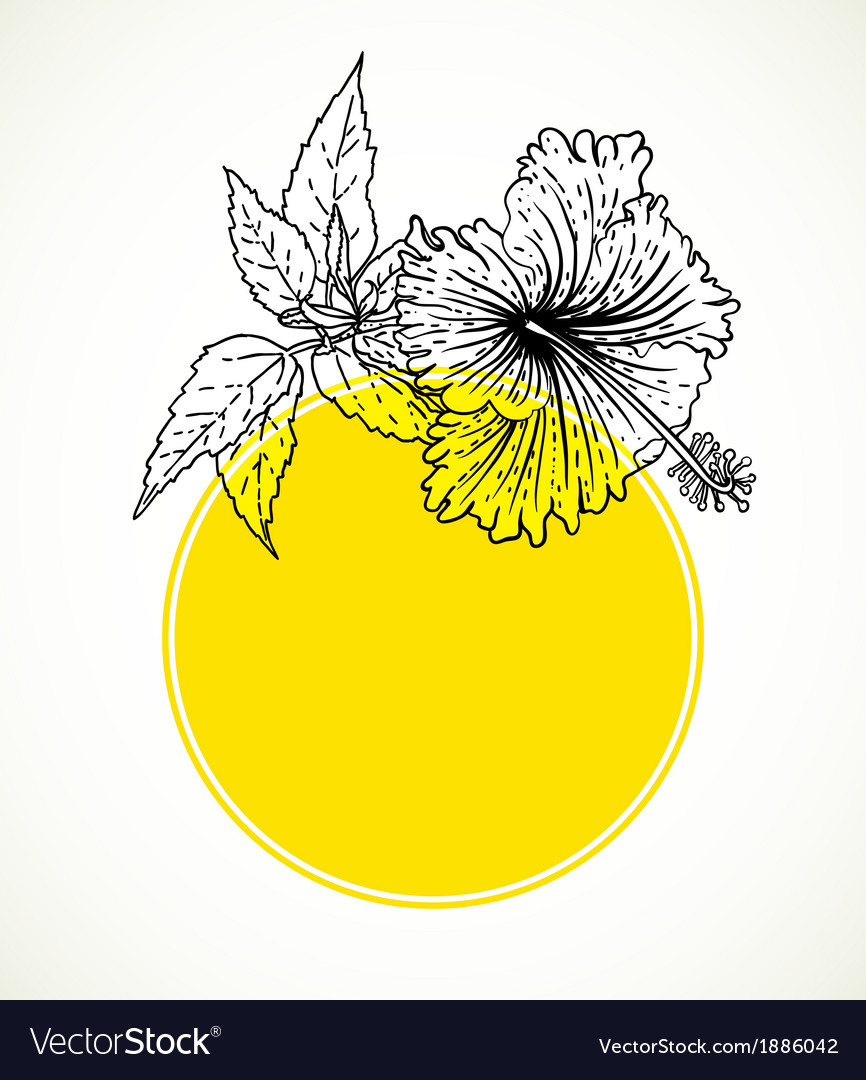 Card with hibiscus on yellow circle frame vector | Price: 1 Credit (USD $1)