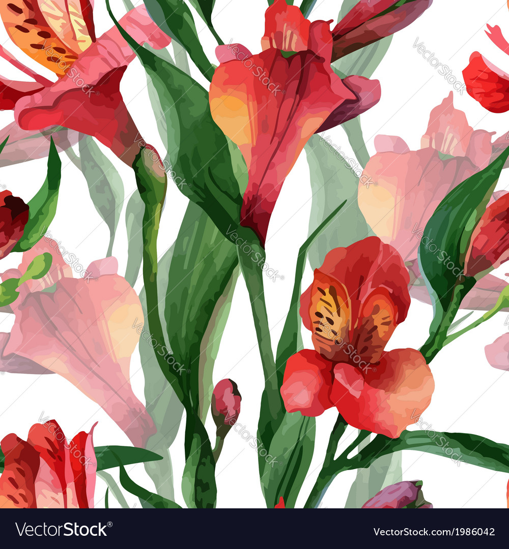 Floral pattern seamless background red vector | Price: 1 Credit (USD $1)