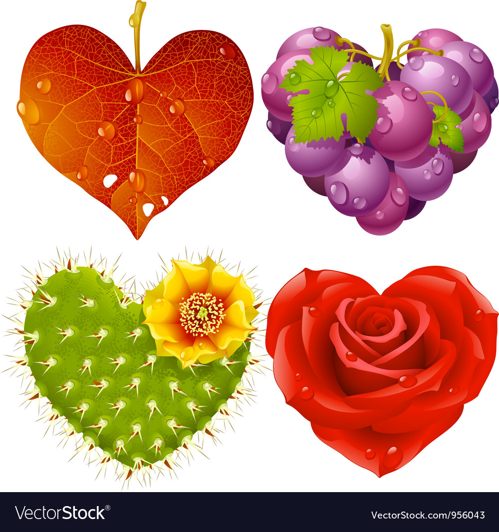 Shape of heart set vector | Price: 3 Credit (USD $3)