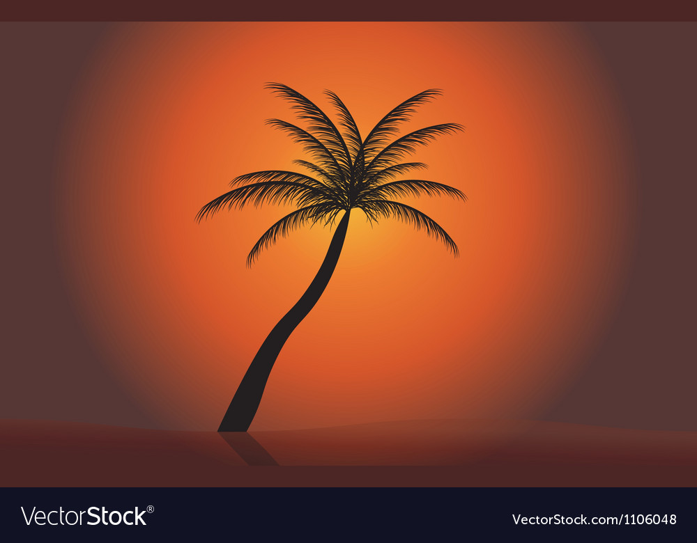 Palm in the sunset  eps 10 vector | Price: 1 Credit (USD $1)