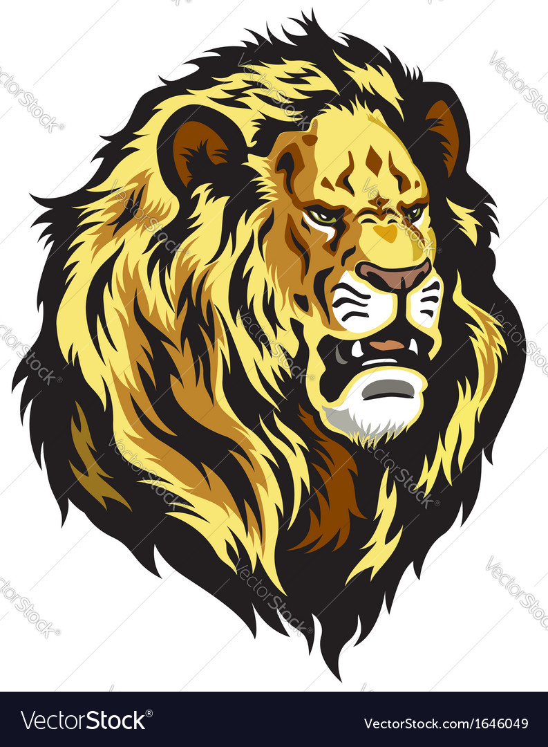 Head of lion vector | Price: 1 Credit (USD $1)