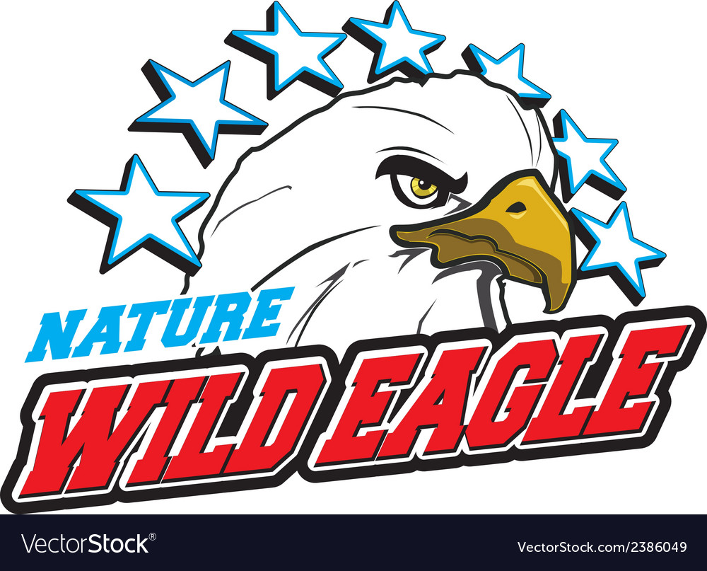 Wild eagle vector | Price: 1 Credit (USD $1)