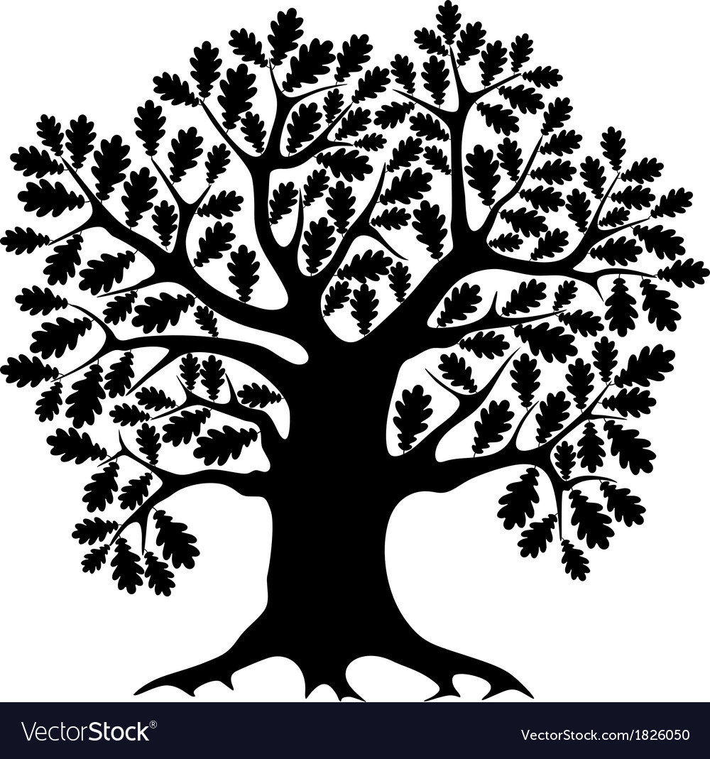 Oak vector | Price: 1 Credit (USD $1)