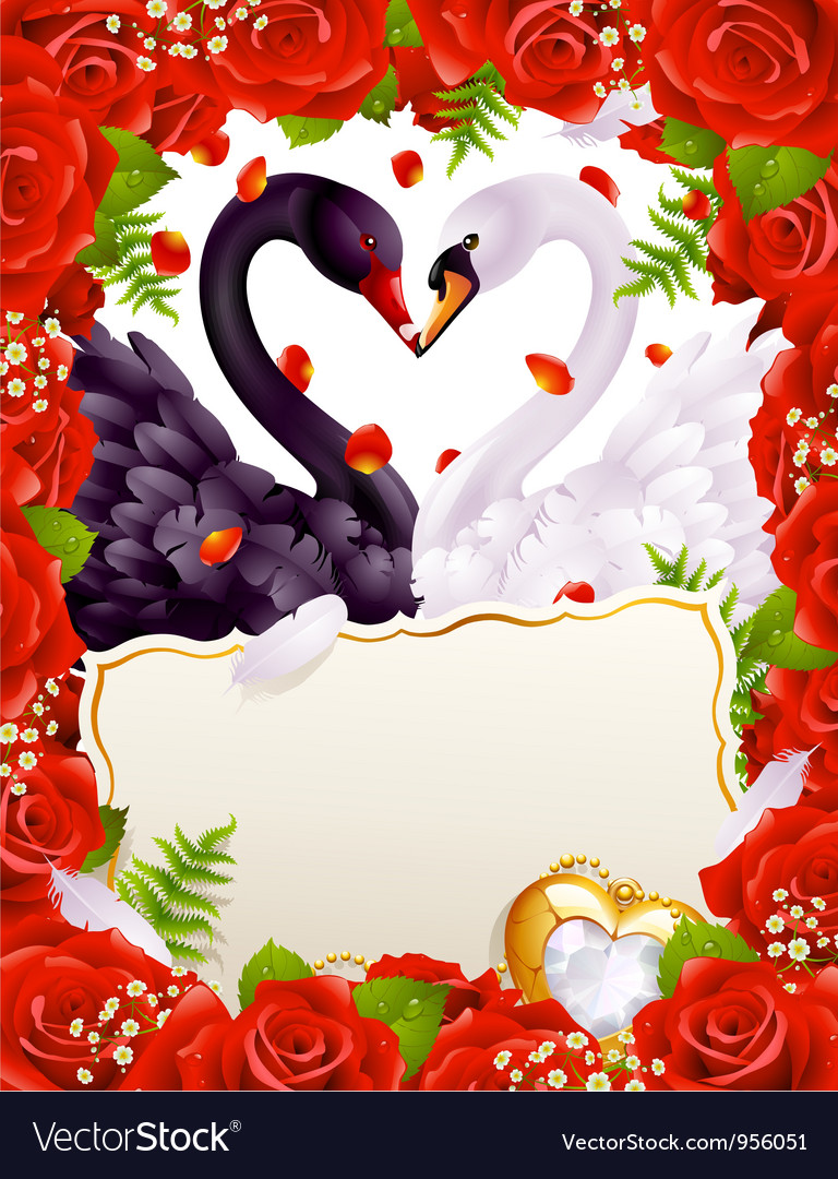 Greeting card with swans in love vector | Price: 3 Credit (USD $3)