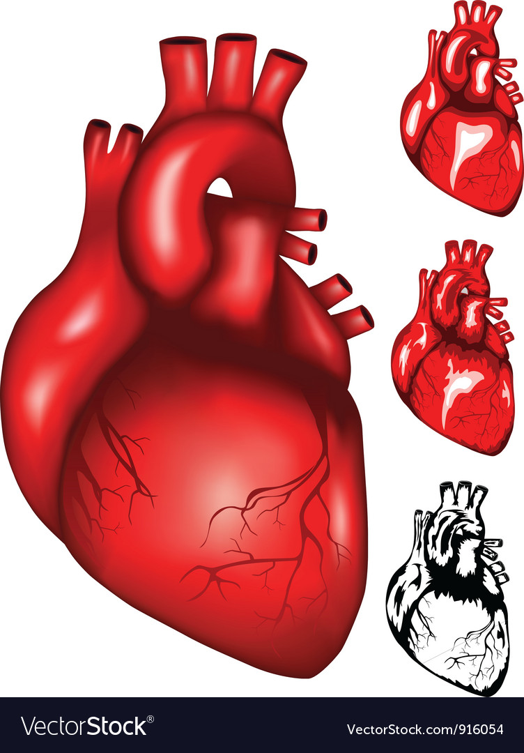 Heart2 vector | Price: 1 Credit (USD $1)