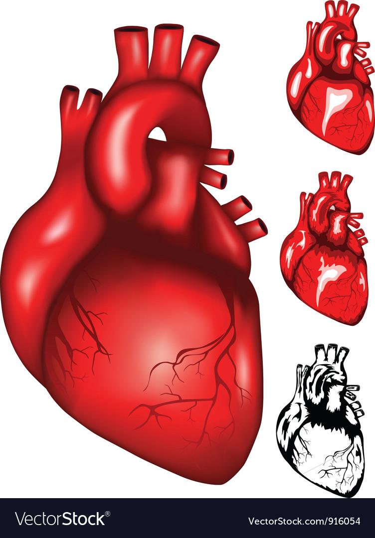 Heart2 vector | Price: 1 Credit (USD $1)