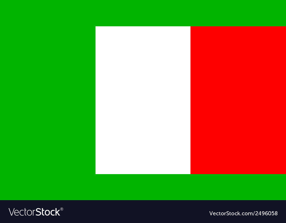 Flag of italia vector