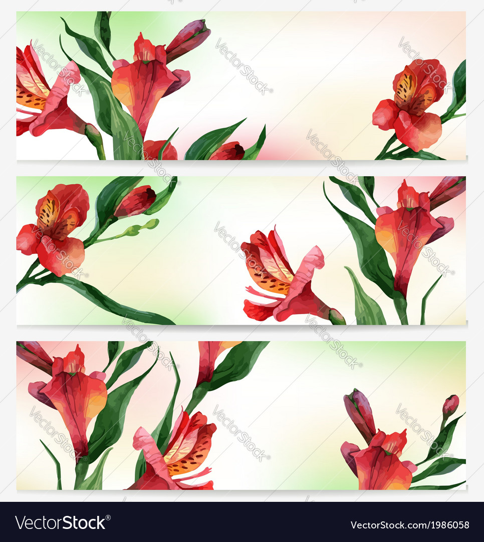 Header bright floral backgrounds vector | Price: 1 Credit (USD $1)