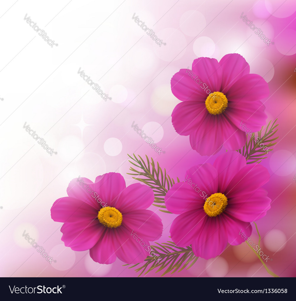Holiday background with three pink flowers vector | Price: 1 Credit (USD $1)