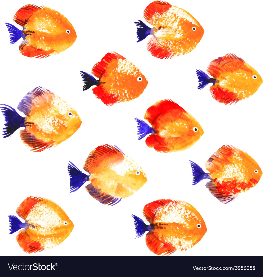 Set of watercolor discus fish vector | Price: 1 Credit (USD $1)