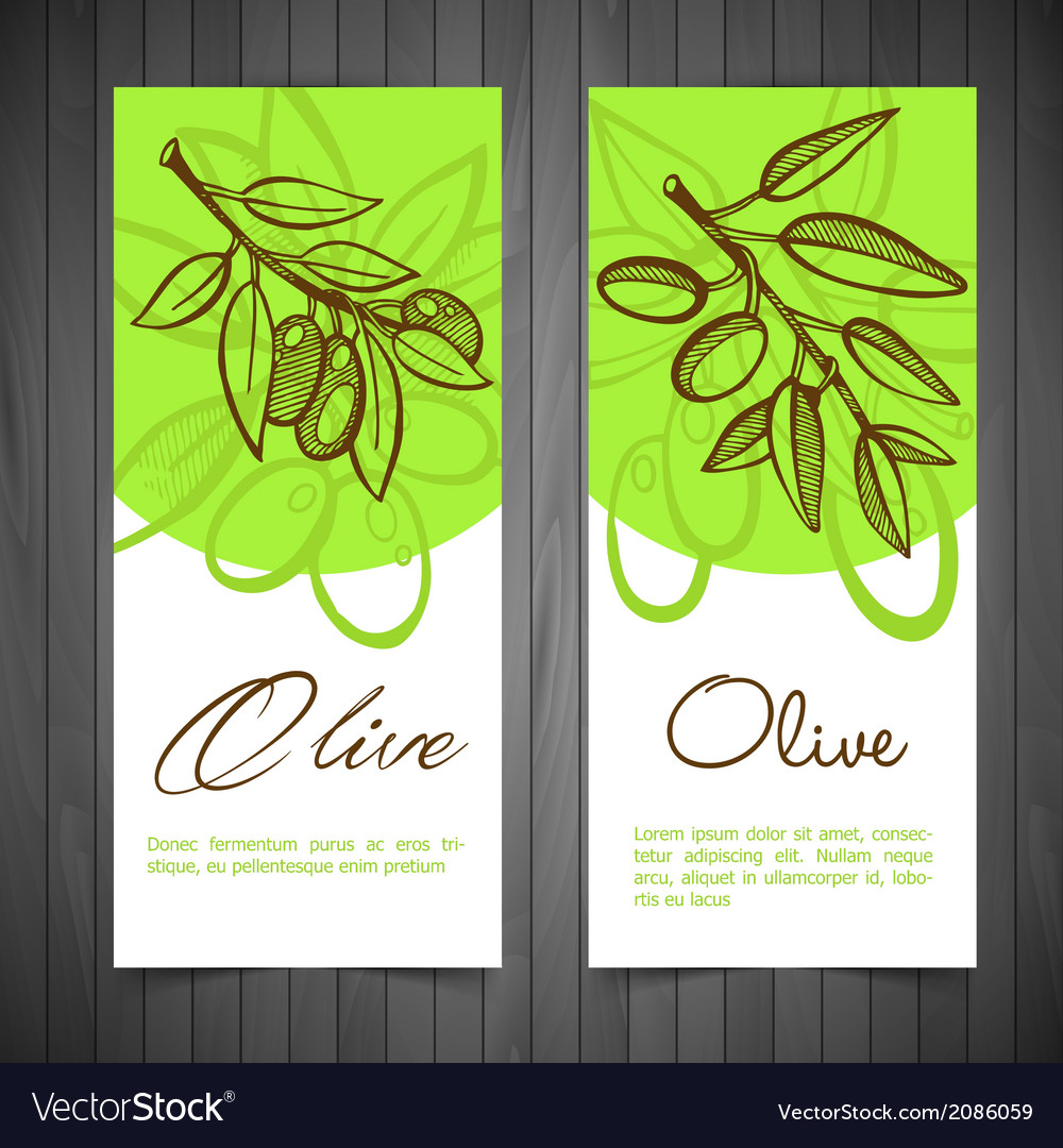 Hand-drawing olives vector | Price: 1 Credit (USD $1)