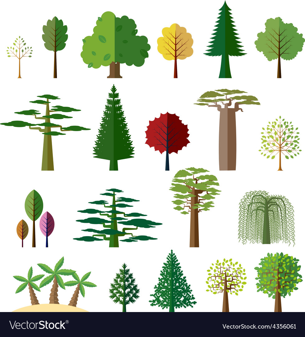 Trees from different regions of the world vector | Price: 1 Credit (USD $1)
