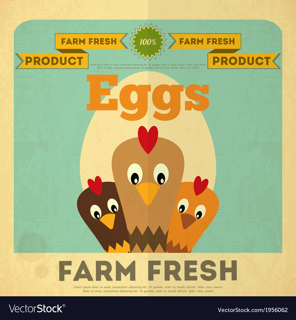 Chicken and egg vector | Price: 1 Credit (USD $1)