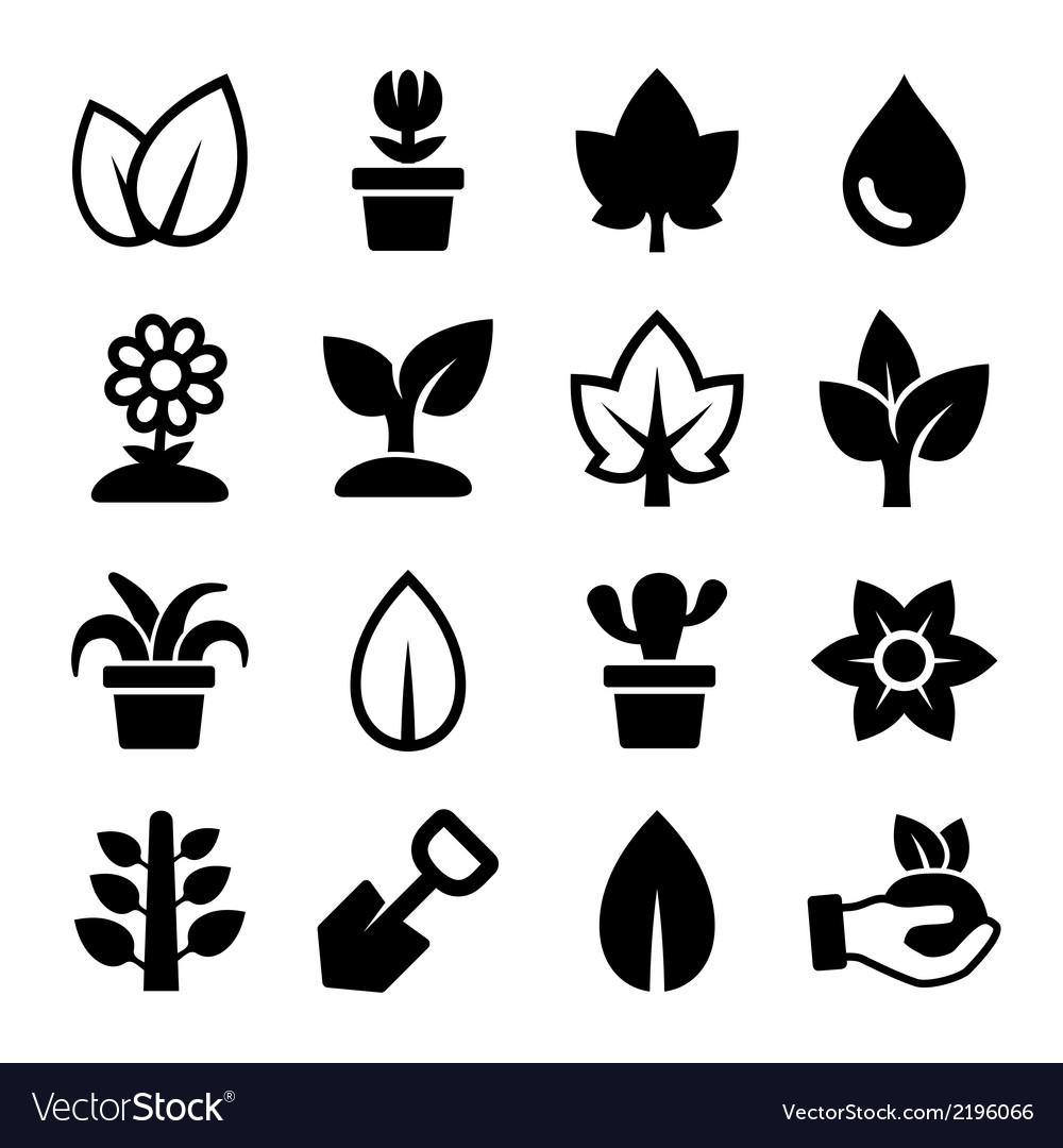 Leaf and plants icons set vector
