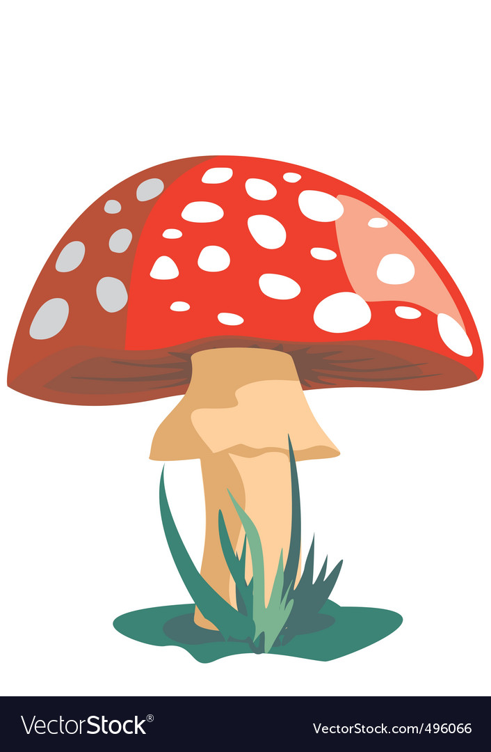 Mushroom vector   Price: 1 Credit (USD $1)