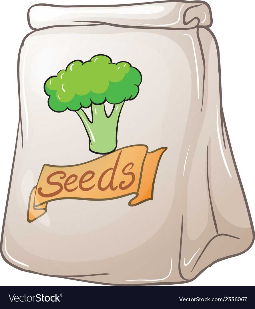 A pack of broccoli seeds vector | Price: 1 Credit (USD $1)