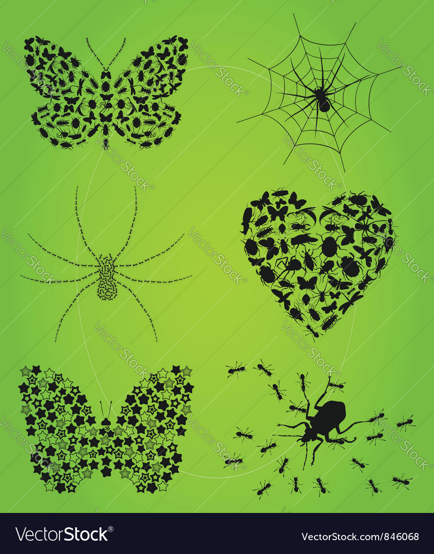 Collection of insects vector | Price: 1 Credit (USD $1)
