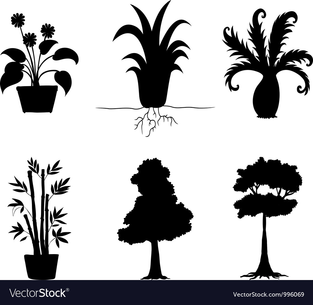 Tree plants silhouettes collection vector | Price: 1 Credit (USD $1)