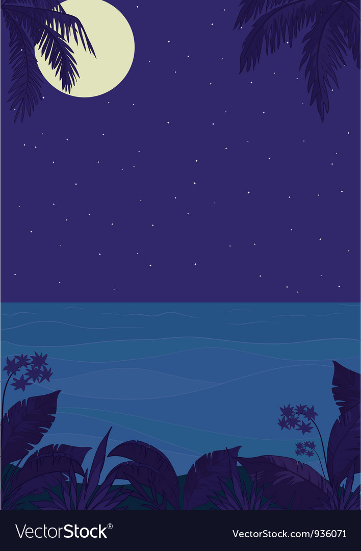 Tropical night ocean landscape vector | Price: 1 Credit (USD $1)