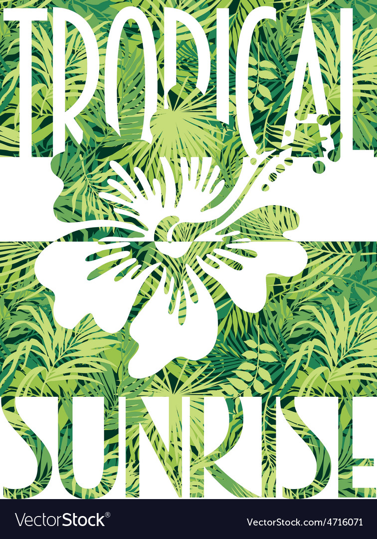 Tropical sunrise vector | Price: 1 Credit (USD $1)