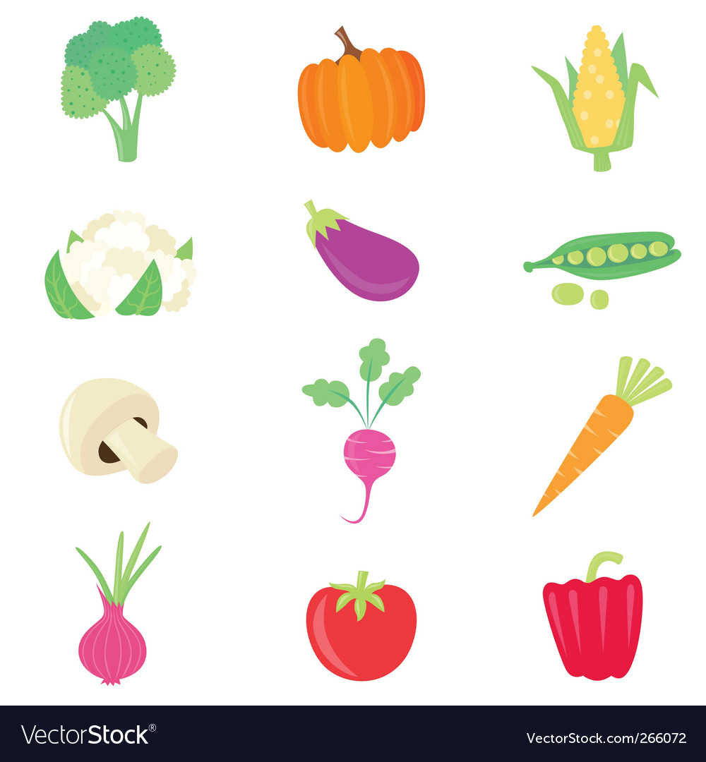 Vegetable food set vector | Price: 1 Credit (USD $1)