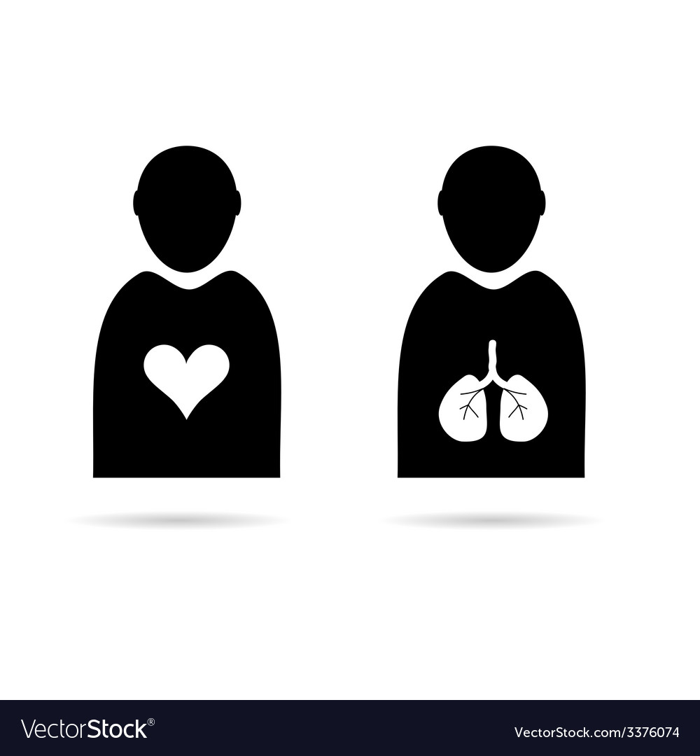 Heart and lungs in man icon vector   Price: 1 Credit (USD $1)