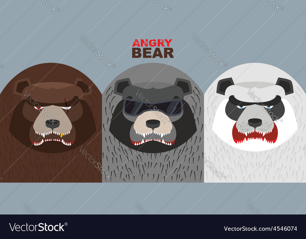 Set bad bears wild angry animals villains vector | Price: 1 Credit (USD $1)
